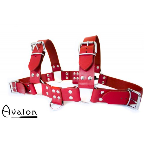 Avalon - BLAZON - Harness Rød